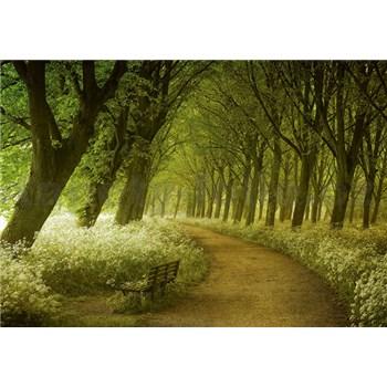 Vliesové fototapety alej stromov, rozmer 366 x 254 cm