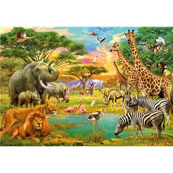 Fototapety Afrika a zvieratá African Animals, rozmer 366 x 254 cm