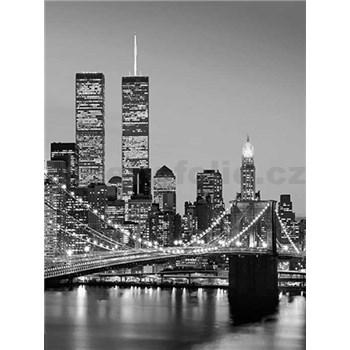 Fototapety Brooklyn Bridge, rozmer 183 x 254 cm