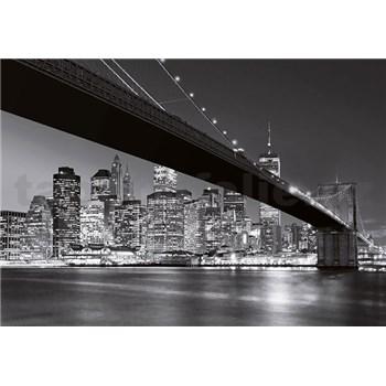 Fototapety Brooklyn Bridge NY, rozmer 366 x 254 cm