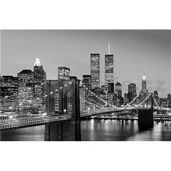 Fototapety Manhattan Skyline at Night, rozmer 175 x 115 cm