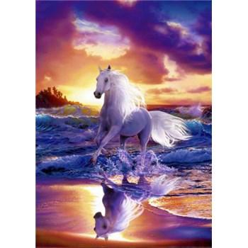 Fototapety Free Spirit, rozmer 183 x 254 cm