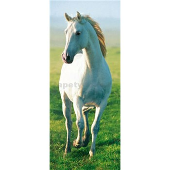 Fototapety White Horse, rozmer 86 x 200 cm