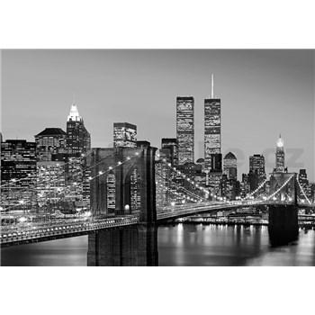 Vliesové fototapety Manhattan Skyline At Night, rozmer 366 x 254 cm