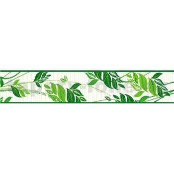 Samolepiaca bordúra popínavé listy zelené 5 m x 8,3 cm