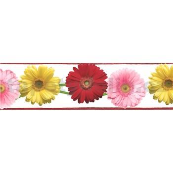Samolepiaca bordúra gerbery 5 m x 8,3 cm