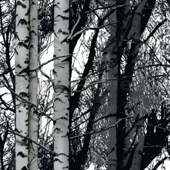 Samolepiaca tapeta Wood - 67,5 cm x 2 m (cena za kus)