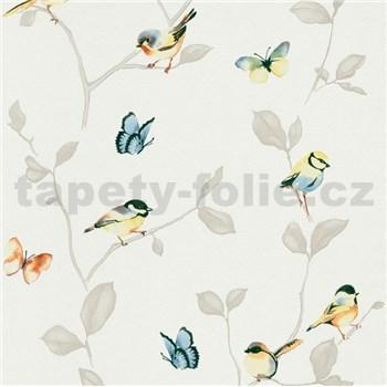 Vliesové tapety na stenu Natural Living vtáky a farebné motýle na hnedých vetvách s lístkami