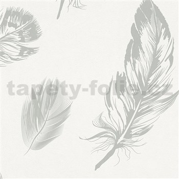 Vliesové tapety na stenu Felicita perie svetlo sivé na bielom podklade