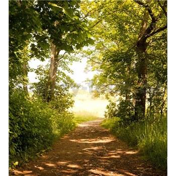 Vliesové fototapety lesná cesta rozmer 225 cm x 250 cm