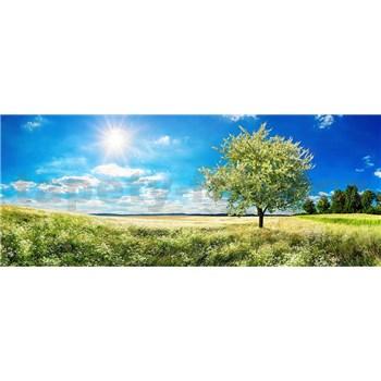 Vliesové fototapety rozkvitnutý strom rozmer 375 cm x 150 cm