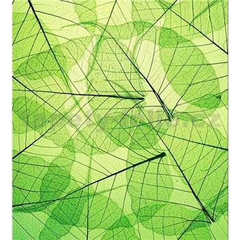 Vliesové fototapety listové žily rozmer 225 cm x 250 cm