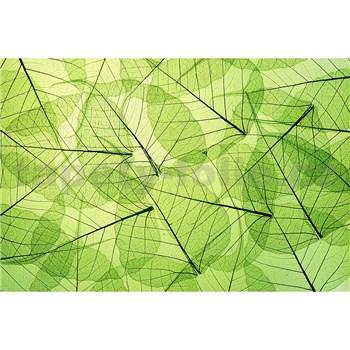 Vliesové fototapety listové žily rozmer 375 cm x 250 cm