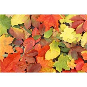 Vliesové fototapety farebný jeseň rozmer 375 cm x 250 cm