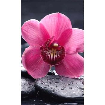 Vliesové fototapety orchidea s kameňmi rozmer 150 cm x 250 cm