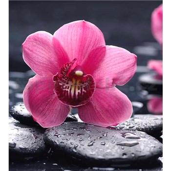 Vliesové fototapety orchidea s kameňmi rozmer 225 cm x 250 cm