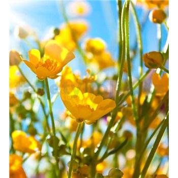 Vliesové fototapety žlté kvety rozmer 225 cm x 250 cm