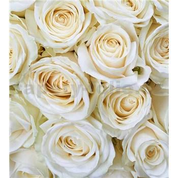 Vliesové fototapety biele ruže rozmer 225 cm x 250 cm