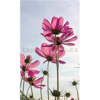 Vliesové fototapety kosmos kvety rozmer 150 cm x 250 cm