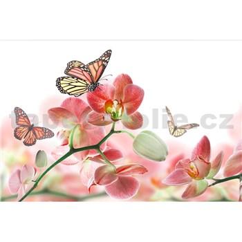 Vliesové fototapety orchidea s motýlmi rozmer 375 cm x 250 cm