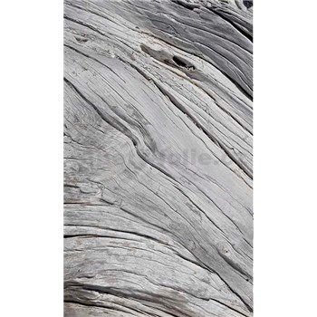 Vliesové fototapety textúra stromu rozmer 150 cm x 250 cm