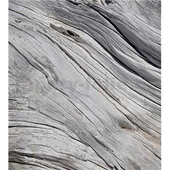 Vliesové fototapety textúra stromu rozmer 225 cm x 250 cm
