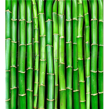 Vliesové fototapety bambus rozmer 225 cm x 250 cm