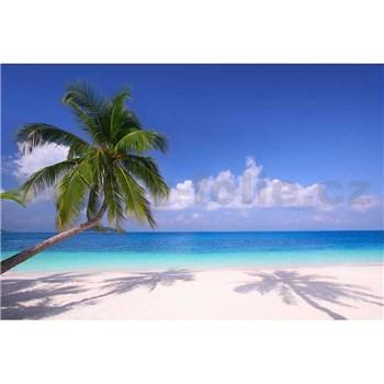 Vliesové fototapety palmy na pláži rozmer 375 cm x 250 cm