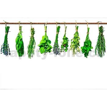 Vliesové fototapety bylinky rozmer 375 cm x 250 cm