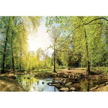 Vliesové fototapety les s potokom, rozmer 312 cm x 219 cm