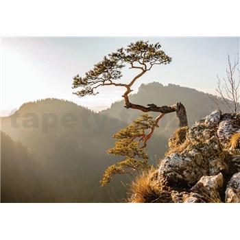 Vliesové fototapety strom na zráze, rozmer 152,5 cm x 104 cm