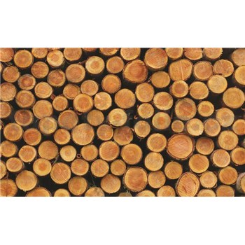 Fototapety dřevěné špalky, rozmer 368 cm x 254 cm