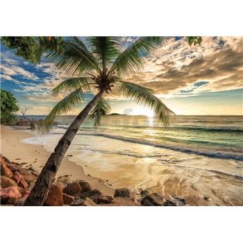 Vliesové fototapety palma a pláž rozmer 368 cm x 254 cm