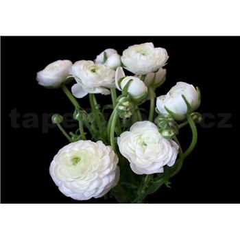 Vliesové fototapety biele kvety na čiernom pozadí rozmer 254 cm x 184 cm