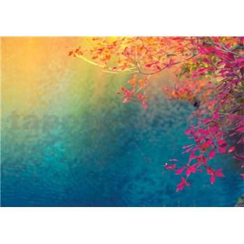 Vliesové fototapety farebné lístie , slnko, nebo rozmer 368 cm x 254 cm