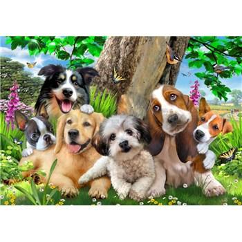 Vliesové fototapety selfie psy rozmer 368 cm x 254 cm