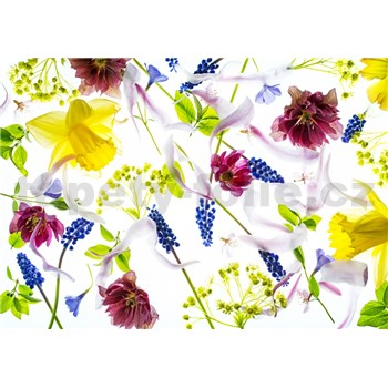 Vliesové fototapety bylinky rozmer 368 cm x 254 cm