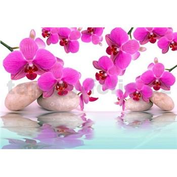 Vliesové fototapety orchidey ružové, rozmer 312 x 219 cm