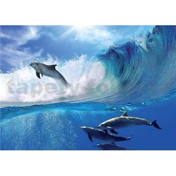 Vliesové fototapety delfíny, rozmer 312 cm x 219 cm