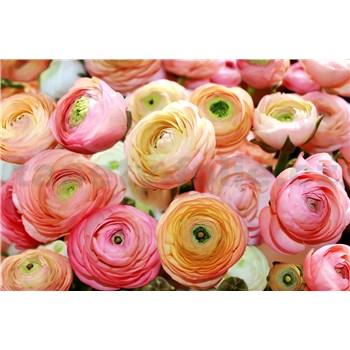 Fototapety kvety ruží, rozmer 368 cm x 254 cm