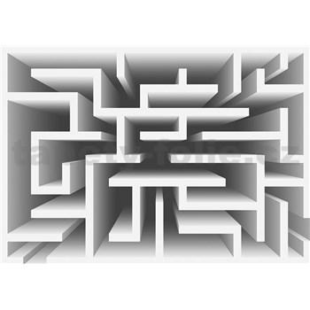 Fototapety 3D labyrint, rozmer 368 cm x 254 cm
