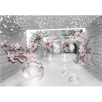 Vliesové fototapety 3D abstraktný koridor rozmer 368 cm x 254 cm