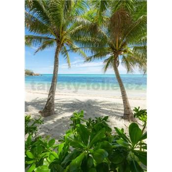 Vliesové fototapety Hefele palmová pláž, rozmer 200 cm x 280 cm