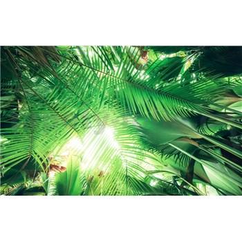Vliesové fototapety Hefele palmový tieň, rozmer 450 cm x 280 cm