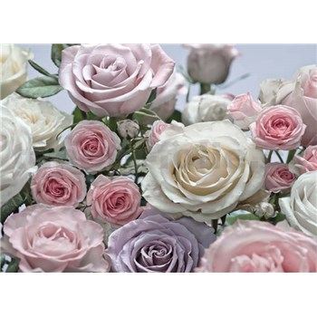 Fototapeta ruže, rozmer 368 x 254 cm