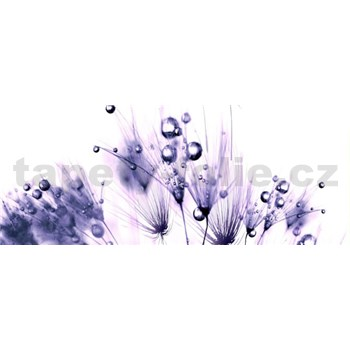Vliesové fototapety fialové rastliny s rosou, rozmer 250 x 104 cm