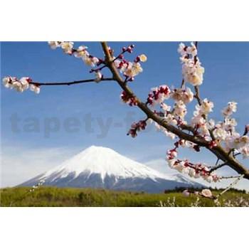 Fototapety japonská sopka s kvetmi, rozmer 368 cm x 254 cm