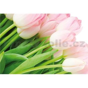 Vliesové fototapety ružové tulipány, rozmer 312 x 219 cm