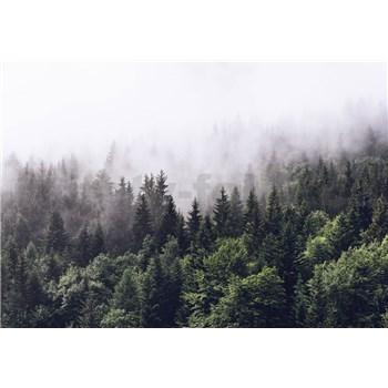 Fototapety opar nad lesom rozmer 366 cm x 254 cm - POSLEDNÉ KUSY
