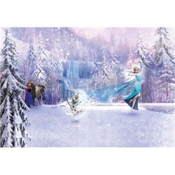 Fototapety Disney Frozen les rozmer 368 cm x 254 cm